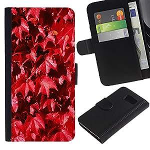 Billetera de Cuero Caso Titular de la tarjeta Carcasa Funda para Samsung Galaxy S6 SM-G920 / Autumn Leaves Nature Vine Fall / STRONG