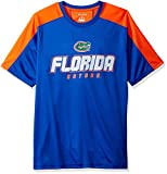 NCAA Florida Gators Men's Impact Color Blocked T-Shirt, Large, Blue