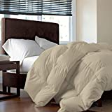 Tot America 100% HYPOALLERGENIC Genuine Luxurious Egyptian Cotton HEAVEN LIKE FEEL COZY & SNUGLY 400 GSM Comforter King/Cal-King, Ivory