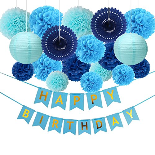 Blue Birthday Party Decorations, Happy Birthday Banner, 14 Paper Pom Poms, 2 Paper Lanterns, 2 Paper Fans - Men Girls Kids, Baby Shower, Boys 1st Birthday Party Supplies