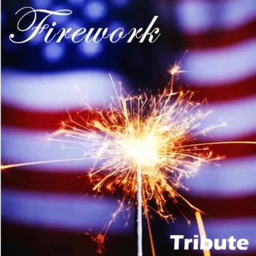 Firework (Instrumental)