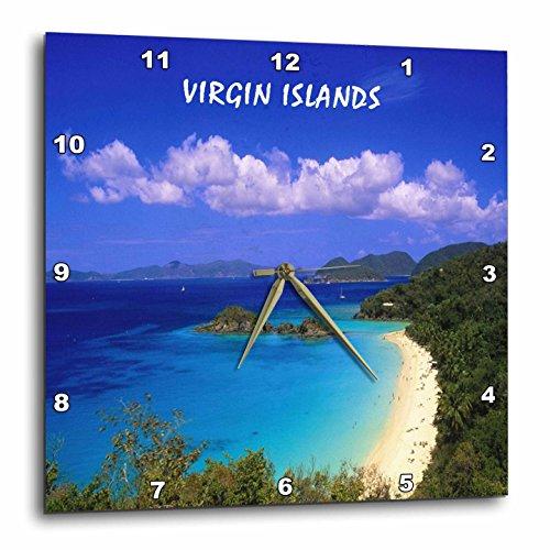 3dRose dpp_80881_1 Trunk Bay Virgin Islands Wall Clock, 10 by 10-Inch