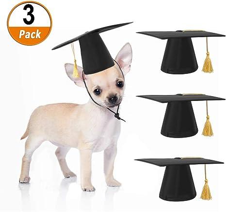 3 Piezas Sombrero de Graduación Mascotas Gorra Académica Perro ...