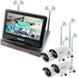 Crystal Vision CVT9604E-3010WHD 4-Ch HD 2TB HDD Wireless CCTV with 4 Cameras