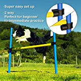 Sowsun Dog Agility Equipment, Outdoor Games
