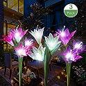 3 Pk dapai Solar Flowers Garden Light