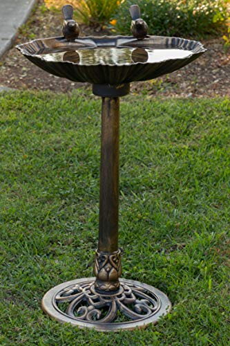 Bronze Bird Bath with Two Birds