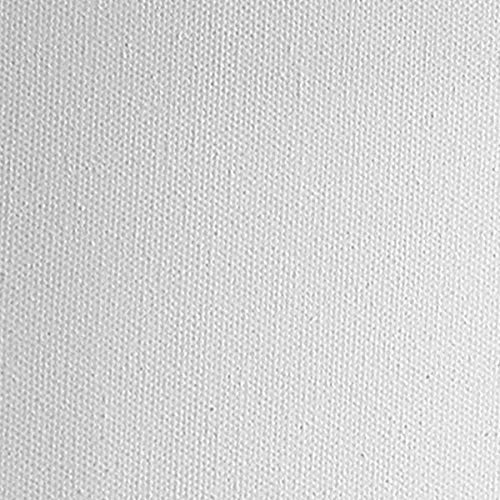 Practica Economy Pre Stretched Canvas Cotton Artist Acid Free Primed Painting Canvas 5/8'' Deep [Value Box of 20] 16x20'' by Practica (Image #2)