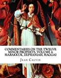 img - for Commentaries on the Twelve Minor Prophets, Volume 4: Habakkuk, Zephaniah, Haggai book / textbook / text book