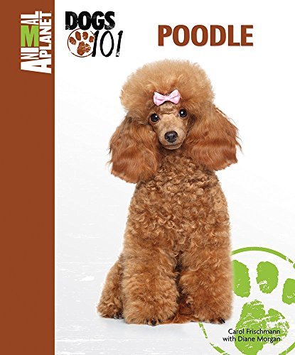Poodle (Animal PlanetTM: Dogs 101)