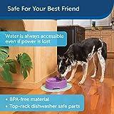 PetSafe Current Pet Water Fountain, Circulating