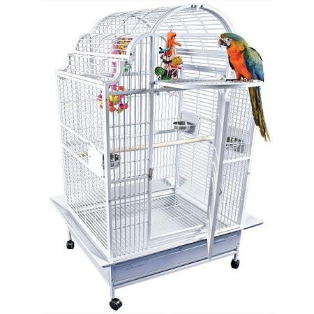 A&E Cage GC6-4032 Black Opening Victorian Top Bird Cage, 40'' x 32'' by A&E Cage