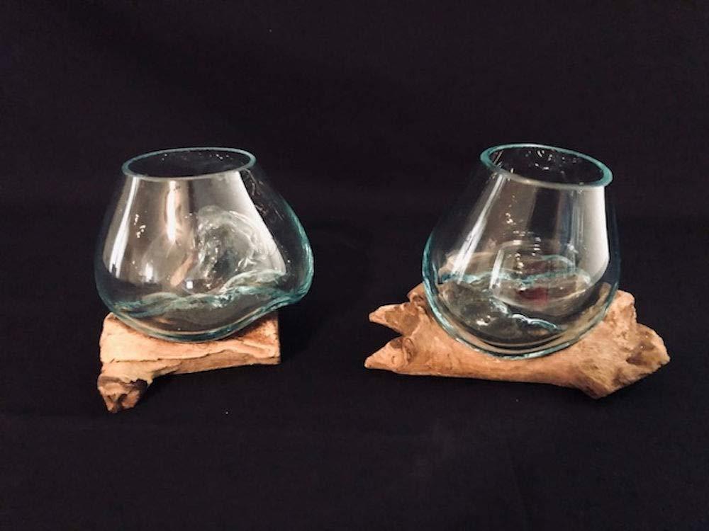 Complete Set White Sand Live Air Plant Mini Terrarium in Hand Blown Molten Glass on Driftwood Vase