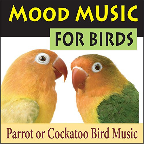 Shake Your Tail Feathers (Music for (Birds Tail Feathers)