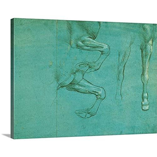 - Leonardo da Vinci Solid-Faced Canvas Print Wall Art Print Entitled Drawing of Horse Front Legs, by Leonardo da Vinci, 1490. Royal Library, Turin, Italy 16