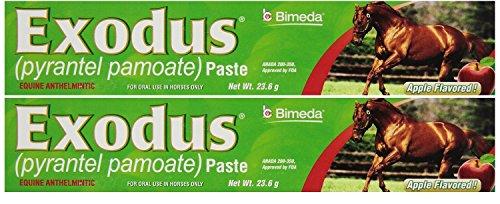 Exodus Paste - Pyrantel Paste Horse 23.6g wormer Equine Parasite EXODUS ( Pamoate Strongid ) OTC 2 PACK