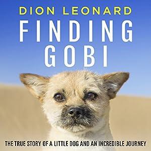 Finding Gobi Audiobook
