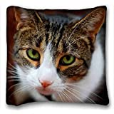 Custom Cotton & Polyester Soft ( Animals cat faces sad sight ) Popular 16x16 inch One Side Pizza Rectangle Pillowcase suitable for Queen-bed PC-Yellow-695