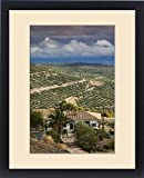 Framed Print of Spain, Andalucia Region, Jaen Province, Ubeda, elevated view of olive groves