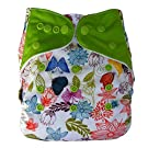 Bamboo All In One Cloth Diaper with Pocket, Spring