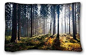Soft Pillow Case Cover Nature Custom Cotton & Polyester Soft Rectangle Pillow Case Cover 20x30 inches (One Side) suitable for King-bed