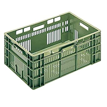 Disset Odiseo PSG6454 BB VE Caja de Plástico para Frutas y Vegetales, Verde, 38