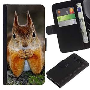 Samsung Galaxy S3 III i9300 i747 - Dibujo PU billetera de cuero Funda Case Caso de la piel de la bolsa protectora Para (Cute Squirrel)