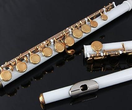 Amazon.com: Flauta Glory Closed, agujero c, flauta con funda ...