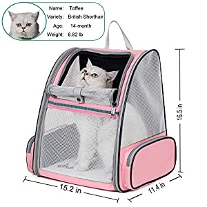 DILISENS Traveler Pet Backpack Comfort Portable Carriers Hold Cats and Dogs,Breathable Cat Backpack for Walk, Hiking and Cycling