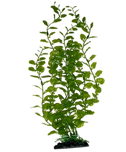 Silk Terrarium Plant - 4