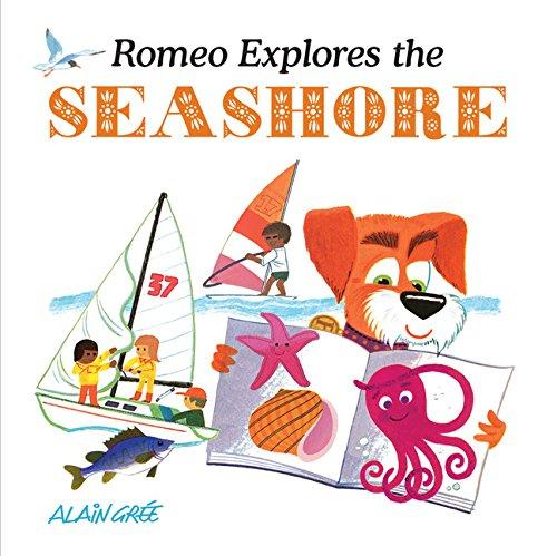 Romeo Explores the Seashore