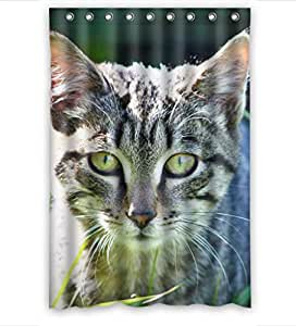 Custom Design Durable Animal Pet Cute Tabby Cat Shower Curtains, (W*H) 48 * 72 Inch / 122 * 183cm, Polyester, Best For Wife