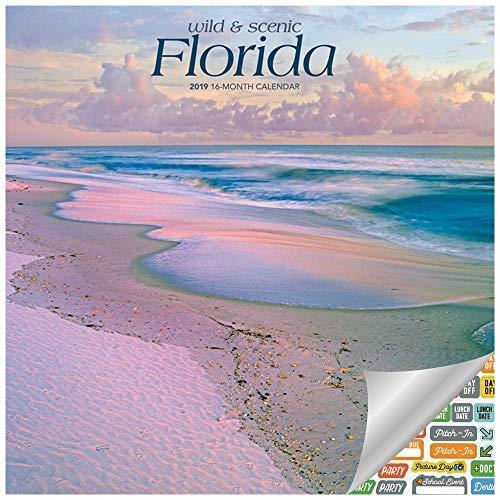 - Florida Wild & Scenic Calendar 2019 Set - Deluxe 2019 Florida Wall Calendar with Over 100 Calendar Stickers (Florida Gifts, Office Supplies)