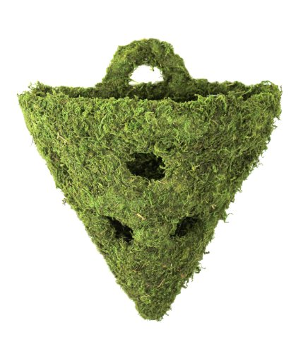 (Super Moss (29396) MossWeave Wall Sconce with Holes, Fresh Green, 10