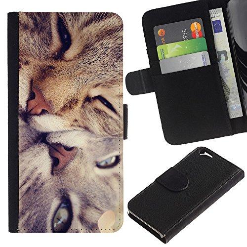 EuroCase - Apple Iphone 6 4.7 - Cute Cat Friends - Cuir PU Coverture Shell Armure Coque Coq Cas Etui Housse Case Cover