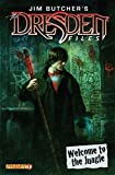 Jim Butcher's The Dresden Files: Welcome to the Jungle #1 (of 4)