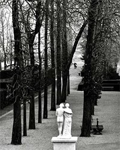 1art1 París - PARC De Saint Cloud by Édouard Boubat Póster Impresión  Artística (30 x 24cm): Amazon.es: Hogar