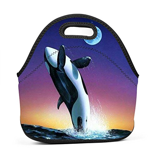 Lunch Bag Dunkleosteus Lunch Bag Insulated Lunch Box Waterpr
