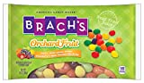 Brach's Orchard Fruit Jelly Beans, 14 Ounce (Pack of 24)