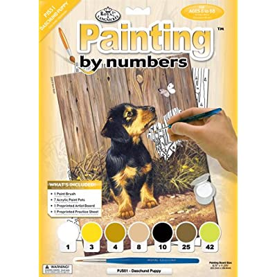 Royal & Langnickel Painting by Numbers Junior Small Art Activity Kit, Dachshund Puppy (PJS51): Arts, Crafts & Sewing
