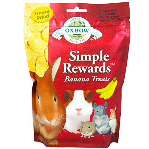 51sdszOVBvL - Oxbow Animal Health Simple Rewards Banana Treat for Pets, 1.0-Ounce
