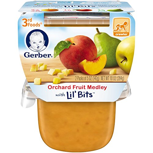 Gerber 3rd Foods Orchard Fruit Medley with Lil' Bits, 5 oz Tubs, 2 Count (Pack of 6)