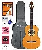 Antonio Giuliani CL6 Rosewood Classical Guitar