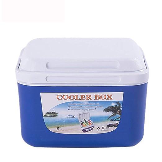 QWE Nevera para Bebidas, Refrigerador Coche,8 litros de Capacidad ...