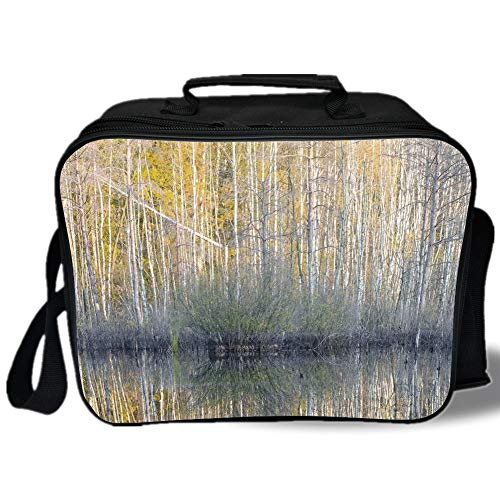 Lake House Decor 3D Print Insulated Lunch Bag,Authentic View of Forest with Thin Tall Trees by the Lake Fall Scenery Nature Print,for Work/School/Picnic,Brown Yellow