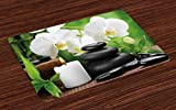 Ambesonne Spa Place Mats Set of 4, Zen Hot Massage Stones with Orchid Candles and Magnificent Nature Remedies, Washable Fabric Placemats for Dining Room Kitchen Table Decor, Black White and Green