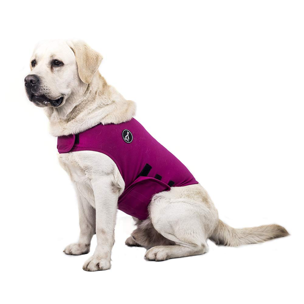 warmpet Dog Anxiety Relief Coat Comfort Keep Clam Wrap Vest Thunder Shirt for XS Small Medium Large XL Dogs,Navy Blue Gray Rose-Red Camouflage (XL, Rose-Red) by @HE
