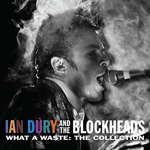 Do it yourself deluxe edition explicit by ian dury on amazon ian dury stream or buy for 198 what a waste the collection solutioingenieria Image collections