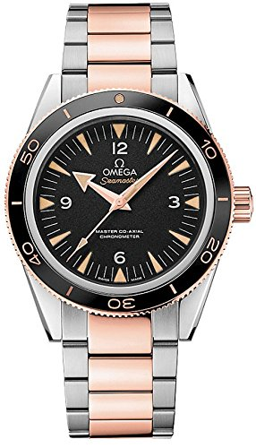 Omega Seamaster 300 Master Co-Axial 41 mm 18K Gold - 233.20.41.21.01.001