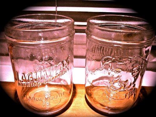 Lagunitas Mason Jar Pint Glasses -Set of 6 Glasses